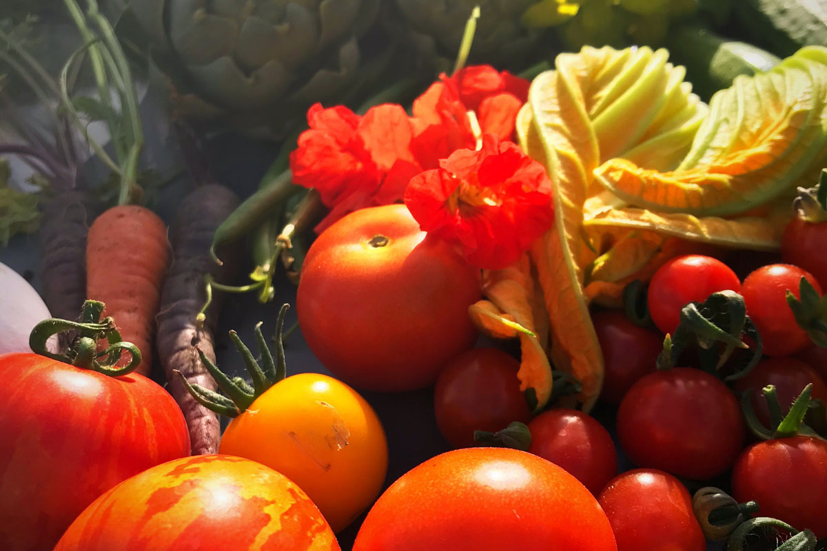 Vegetables from the garden at Blacksmith Shop Crafts