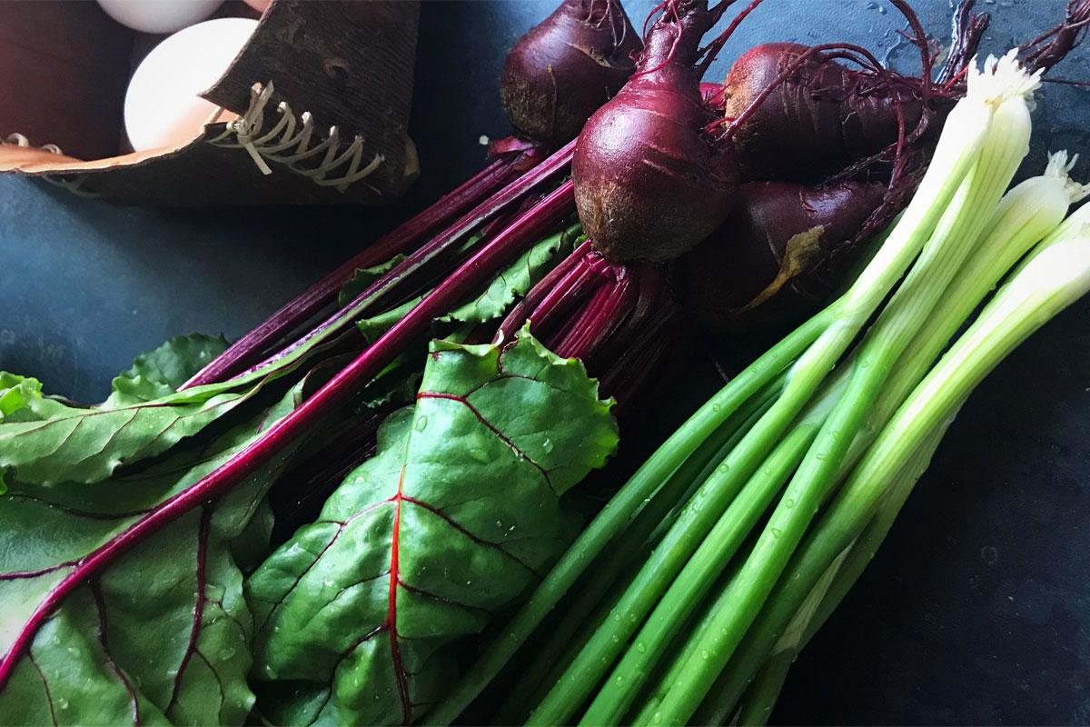 Vegetables grown at Blacksmith Shop Crafts